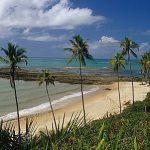 Notícias Cumuruxatiba Bahia - Pousadas Praias Restaurantes
